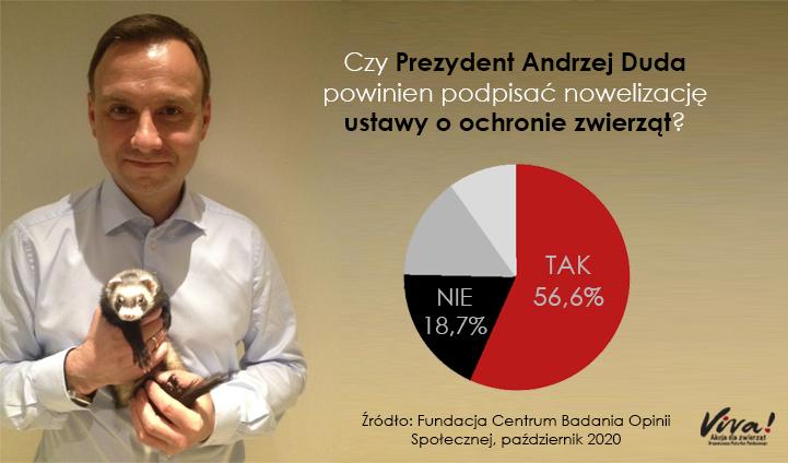 """Ponad połowa Polaków chce, żeby prezydent podpisał """"piątkę dla zwierząt""""!"""