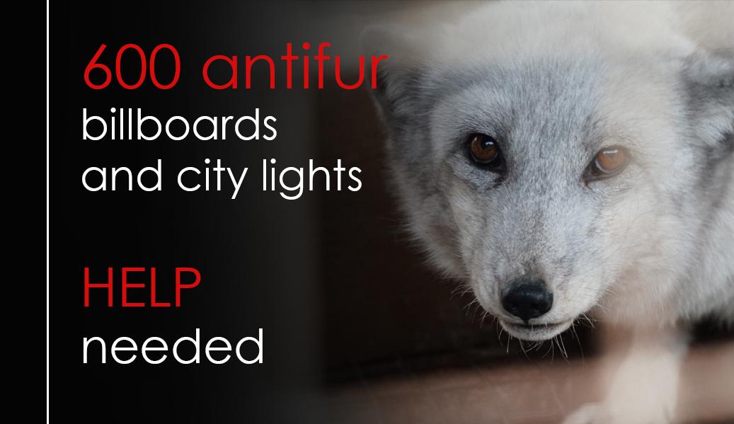 Fundraising for 600 anti-fur billboards
